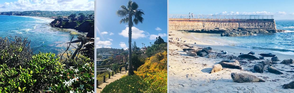 La Jolla Feature pictures